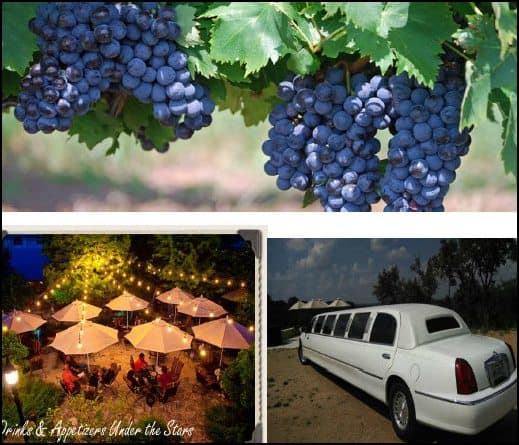 A Great Auction Item is a Texas Wine Country Limo Tour
