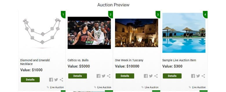 Virtual Fundraiser Live Auction Items Preview Feature